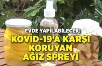 Ev yapımı Kovid-19'a karşı koruyan ağız spreyi