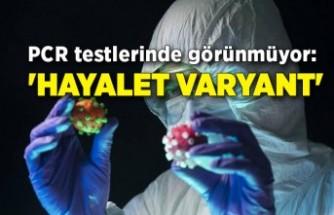 PCR testlerinde görünmüyor: 'Hayalet Varyant'