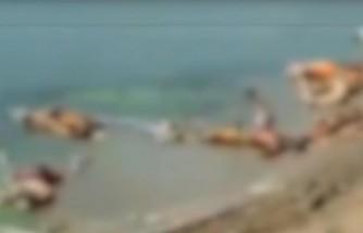 Hindistan'da Ganj Nehri kıyısına 30'dan fazla ceset vurdu