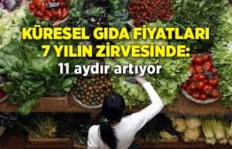 Küresel gıda fiyatları 7 yılın zirvesinde: 11 aydır artıyor