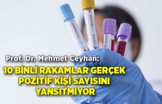 Prof. Dr. Mehmet Ceyhan: 10 binli rakamlar gerçek pozitif kişi sayısını yansıtmıyor