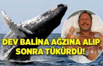 ABD'de ilginç olay: Dev balina ağzına alıp sonra tükürdü!