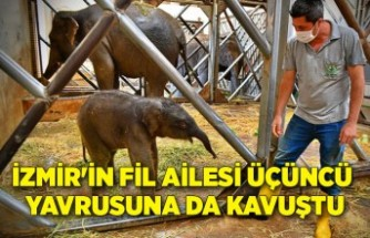 İzmir Doğal Yaşam Parkı'na yeni üye