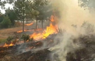 Bakan Pakdemirli: Uşak yangını kontrol altına alındı