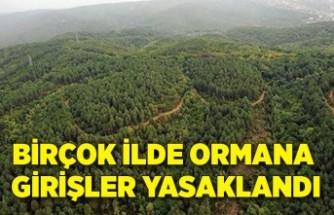 Birçok ilde ormana girişler yasaklandı