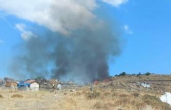 Dikili'de 20 dönümlük makilik alan zarar gördü