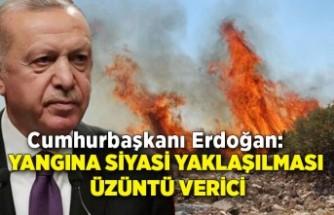 Erdoğan: Yangına siyasi yaklaşılması üzüntü verici