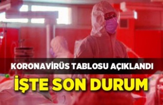 Koronavirüs Tablosu 31 Temmuz 2021