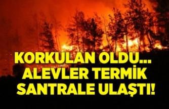 Korkulan oldu: Alevler termik santrale ulaştı!