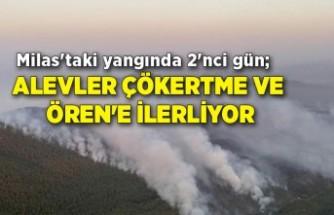 Milas'taki yangında 2'nci gün; alevler Çökertme ve Ören'e ilerliyor