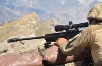 İçişleri: Siirt'te 5 PKK/KCK'lı etkisiz hale getirildi