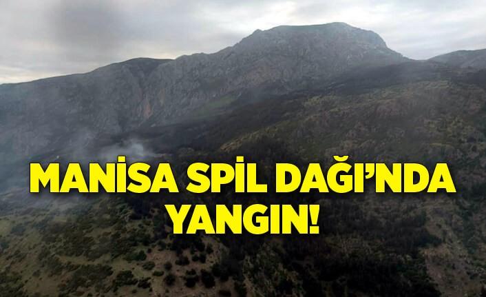 Manisa Spil Dağı Milli Parkı'nda yangın!