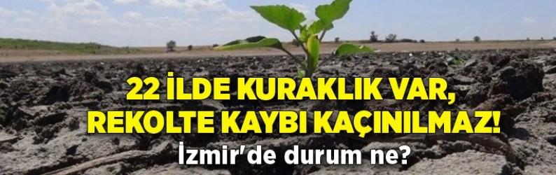 22 ilde kuraklık var, rekolte kaybı kaçınılmaz! İzmir'de durum ne?