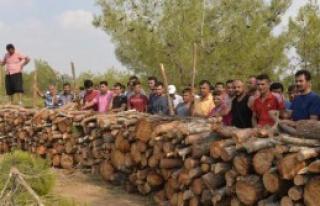 Köylülerden Orman Nöbeti