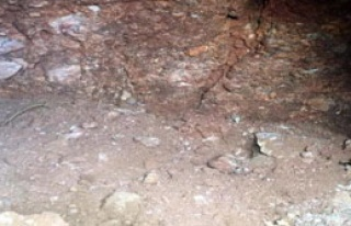 15 Kafatası Ve Kemikler Bulundu