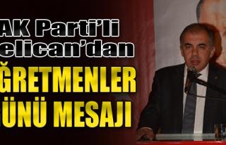 AK Parti'li Delican'dan Öğretmenler Günü Mesajı