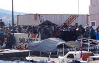 Dikili'de 900'ü Aşkın Mülteci Yakalandı
