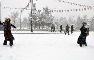 Erzurum'a 3 Saatte 30 Santim Kar Yağdı