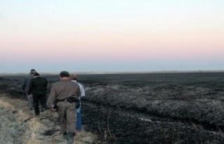 Kuş Cenneti'ndeki Yangınla İlgili 1 Kişi Gözaltında