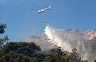 441 Hektar Alan Yandı